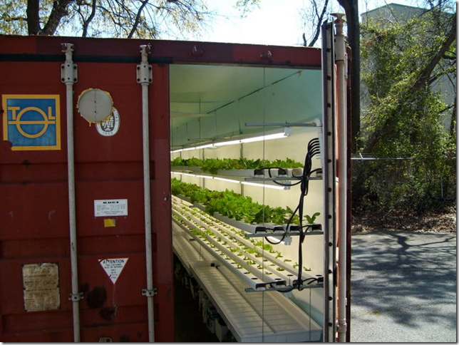shipping-container-garden